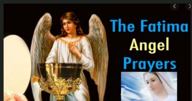 """Angel of Peace"" at Fatima gave visionaries a special prayer to heal the world…Say this prayer three times to repair your soul. The Holy Father desires this ""in reparation for the outrages, sacrileges and indifference with which He Himself is offended."""