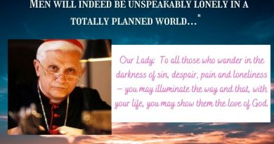 "Ratzinger's prophecy about the future of the church is coming true today: ""Men will indeed be unspeakably lonely in a totally planned world…""  The  One Time Our Lady Spoke of ""loneliness"""