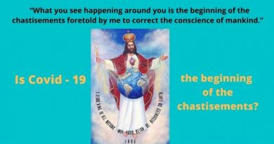"Mystic of Jesus King of All Nations Reveals Message from Jesus – ""What you see happening around you is the beginning of the chastisements foretold by me to correct the conscience of mankind."""