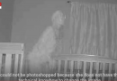 SKY TV REPORTS : Grandmother captures image of 'demon' standing over her granddaughter's bed